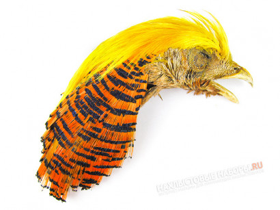 Скальп золотого фазана FLY-FISHING Golden Pheasant Head